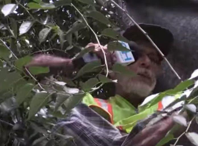 Portada- vive- casa-arbol - tijuana