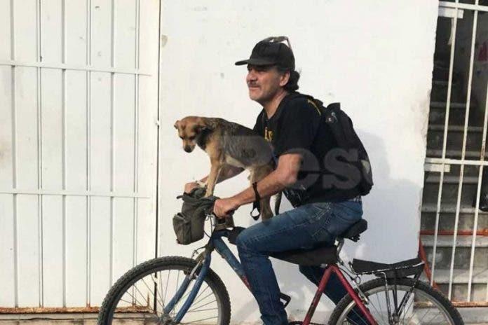 Captan a perrito paseando en bicicleta con su dueño en Cancún