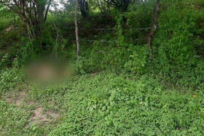 Encuentran abrazados los cadáveres de una mujer y un niño en Morelos