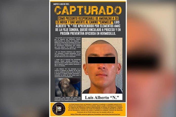 Joven mata al perro de su ex porque no quiso regresar con él