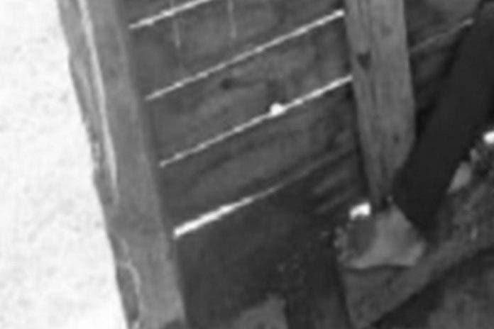 Madre encuentra a su hija desaparecida muerta en una bodega