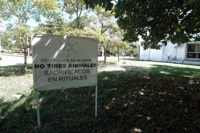 Cancunenses frenan tiradero ilegal de animales usado en rituales
