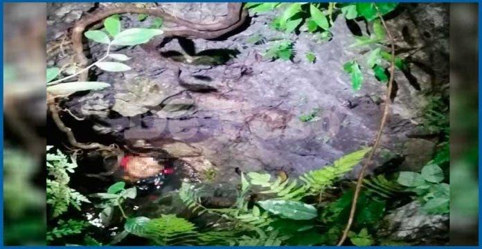 Hombre en estado de ebriedad cae en cenote en región de Cancún